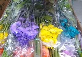Flores colombianas a la Costa Oeste americana